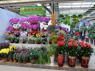 Flower display at Nuren Jie or Ladies Street in Beijing