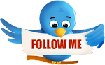 Follow Me On Twitter (Not Yet)