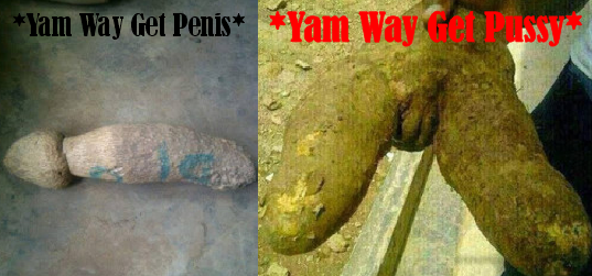 http://iromakelvin.blogspot.com.ng/2015/12/see-photos-have-you-seen-yam-formed-as.html
