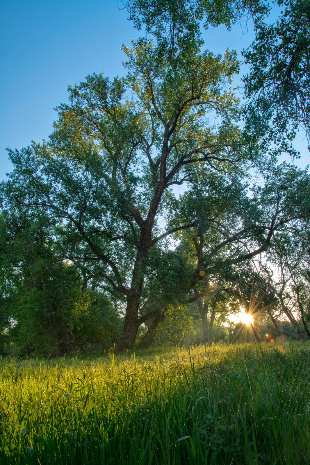 South Platte Park Sunrise