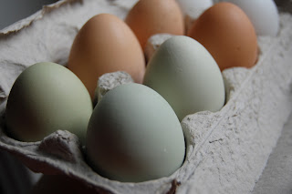 Beautiful Eggs!
