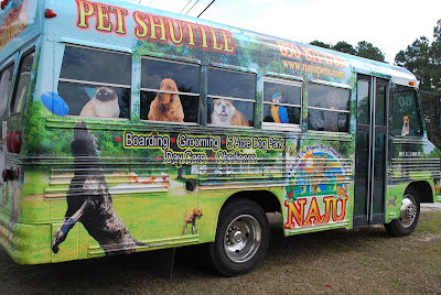 Creative Printing of Bay County - Panama City, Florida - NAJU Boarding & Grooming Shuttle