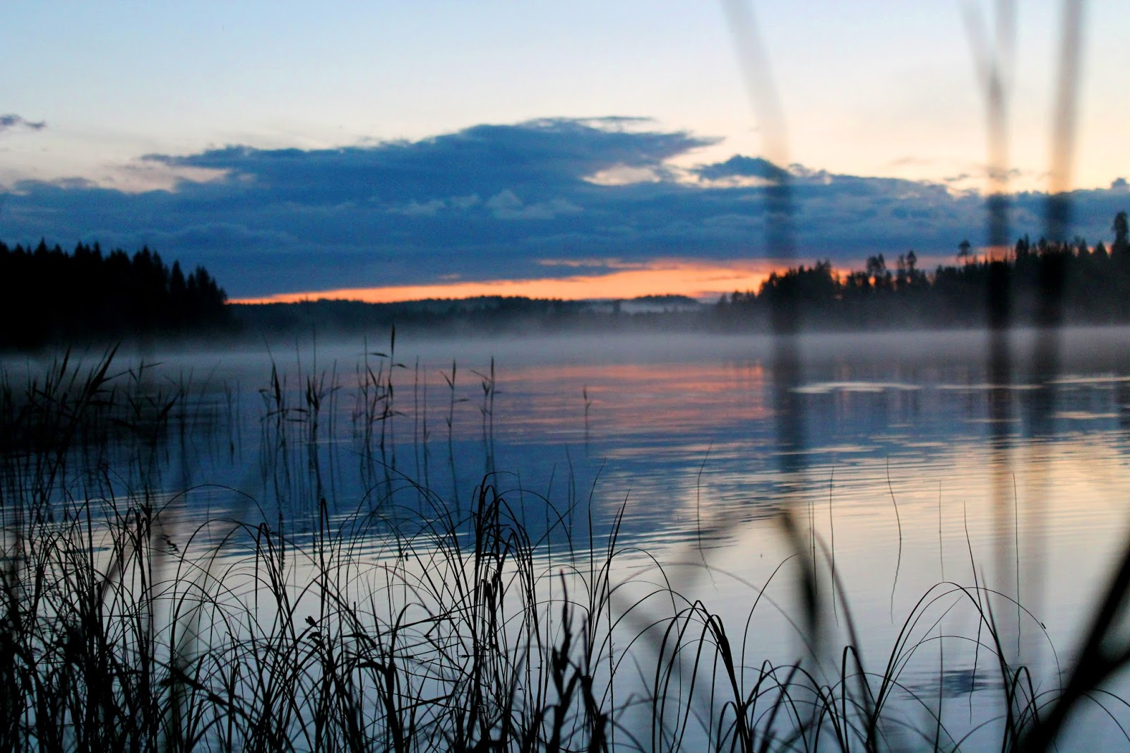 #fog #foggy #lake #saimaa #sea #finland #suomi #forest #clouds #landskape #evening #sunset #sunrise #morning #twilight #east #west