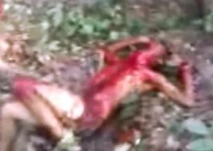 Brutal Asesinato en un Bosque