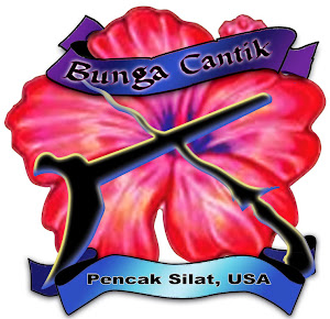 WELCOME TO BUNGA CANTIK PENCAK SILAT BLOG