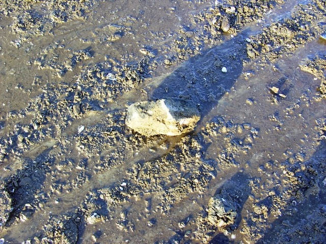 Kövekkel telehajigált meder
