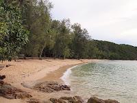 Rimba Resort - Pulau Sibu