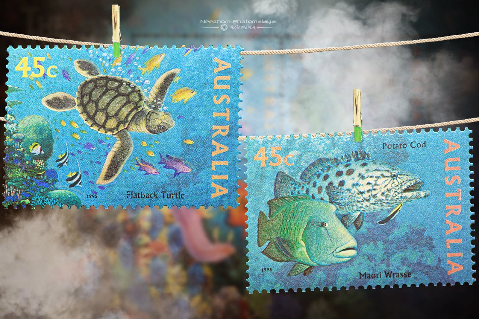 Australia 1995 The World Down Under stamps - Flatback turtle, Potato cod, Maori Wrasse