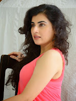 Archana at Panchami movie press meet-cover-photo