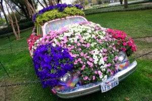 красивые клумбы, цветники