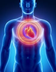 Granos enteros y la Salud del Corazón