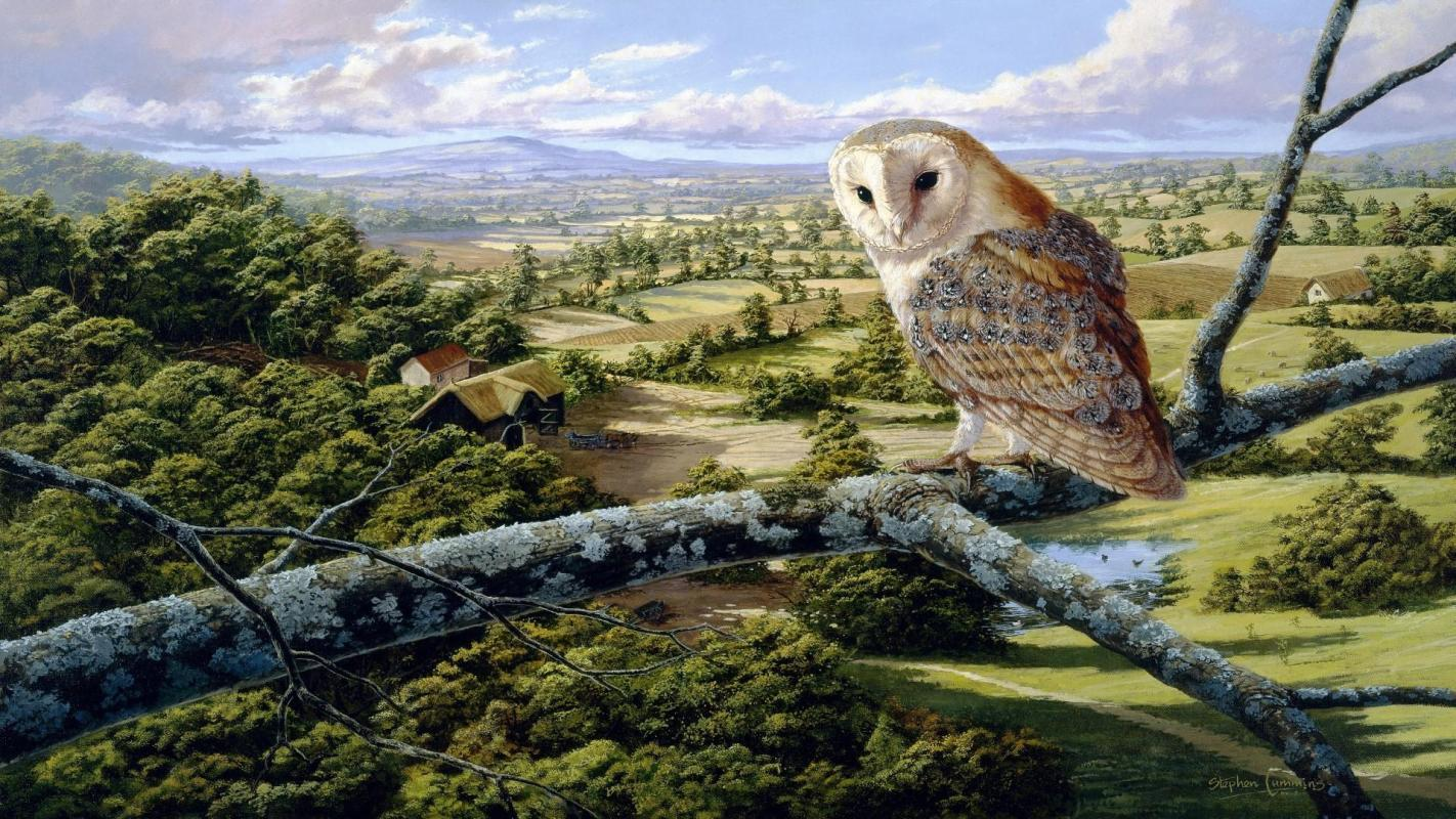 ... Wallpaper: Beautiful Painting Of Nature And Barn Owl - Lovely Nature