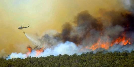 Gambar Hutan Riau Terbakar Tahun 2014 Bencana Alam Terbaru
