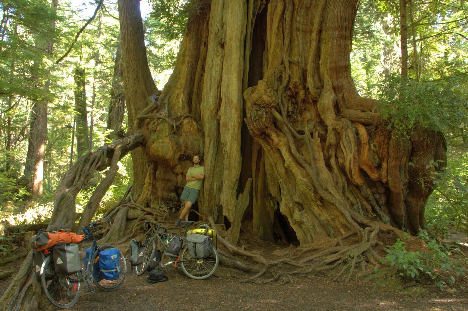 Cycling 11,000km on the big tree tour from Vancouver to Panama (2012-2013)