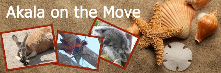 Akala on the move