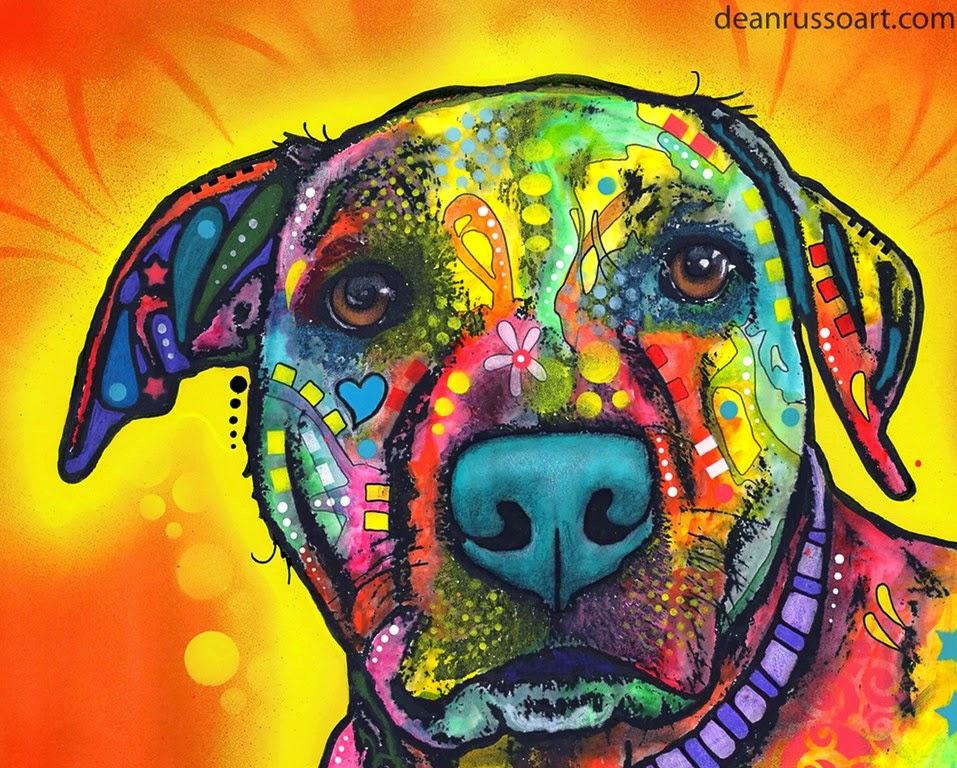 caras de perros en pinturas modernas y coloridas cuadros modernos de