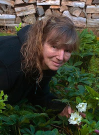 Interview mit Christine Becker, Gewinnerin des Deutschen Gartenbuchpreises 2012