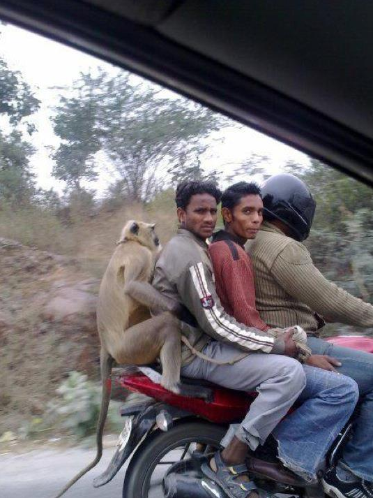 Four People Sitting on The Motorcycle
