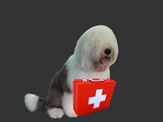 Botiquín-perros