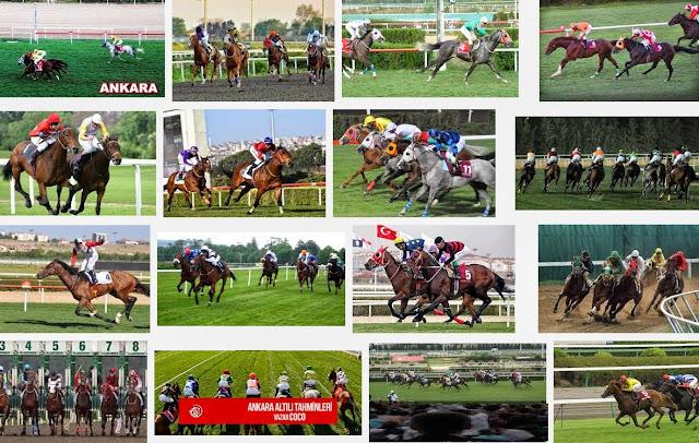 Ankara at yarışları tahmin ve yorumlar bomba atlar