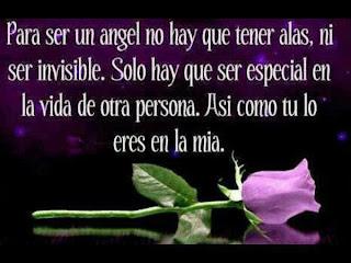 Frases De Amor: Para Ser Un Ángel No Hay Que Tener Alas