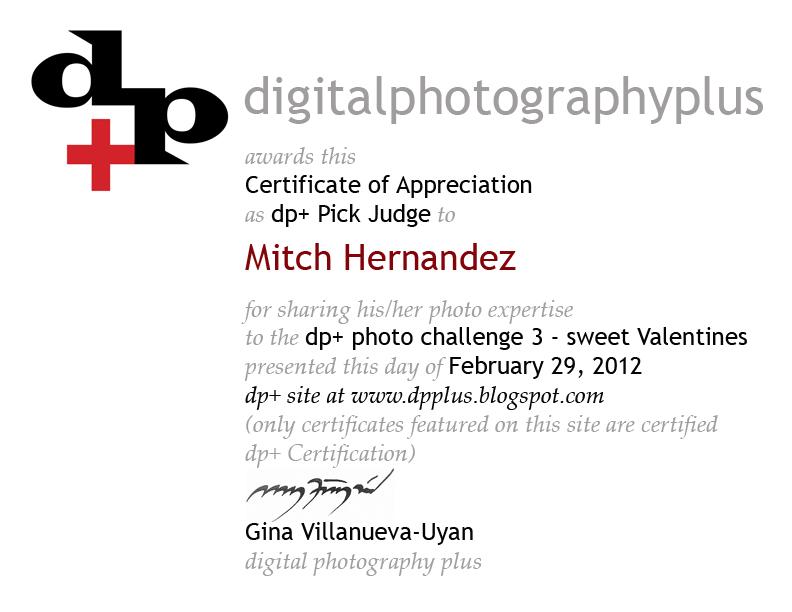 digital photography plus: dp+ photo challenge 3 judges certificate ...