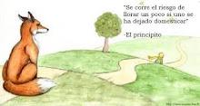 Principito 19
