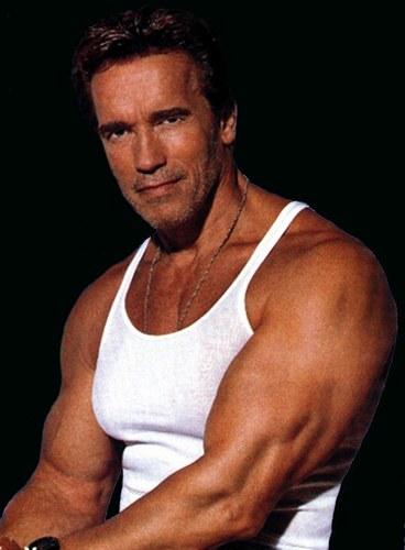 Arnold Schwarzenegger affair confess - Arnold Schwarzenegger affair's, ...