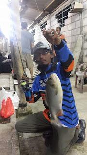 Cara mancing ikan bawal