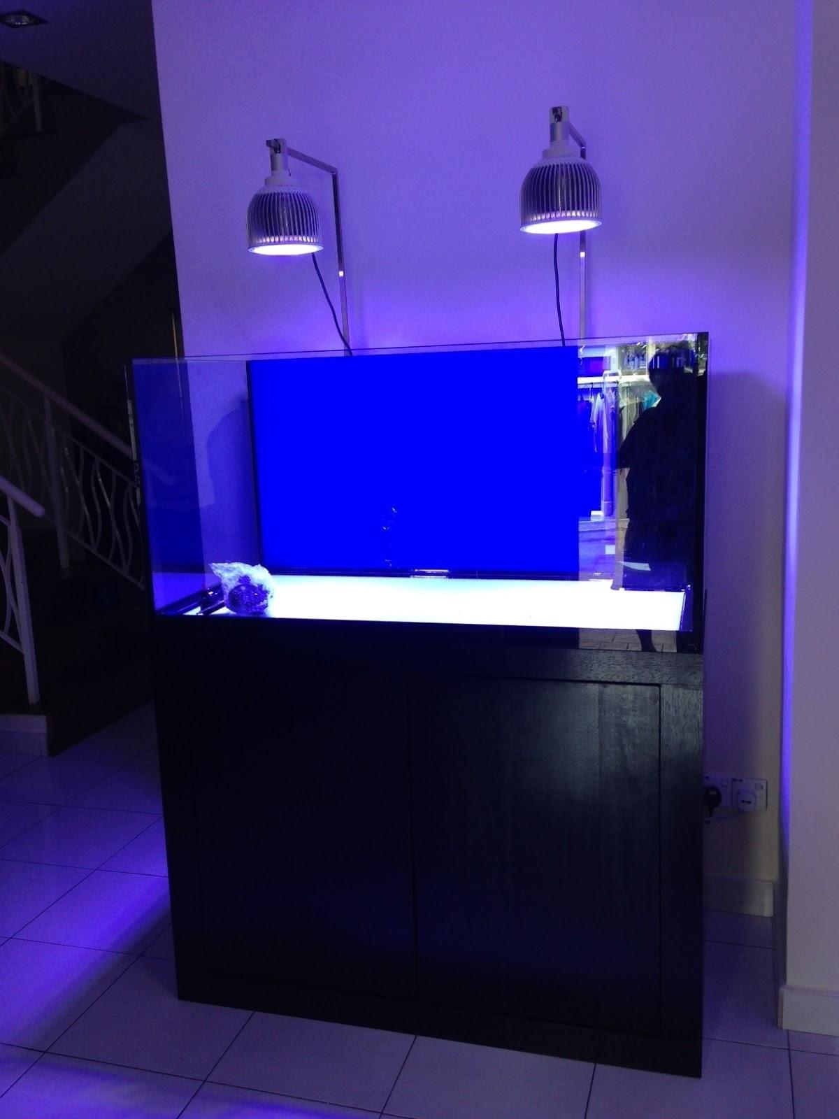 Led Aquarium Lighting Blog Orphek Impressive Monti