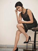 Naveena Glam pics at Ice cream 2 Press meet-cover-photo