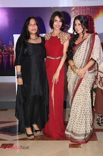 Vidya Balan Pictures in Saree at Celetion of Indian Film Festival of Melbourne 2013  0008