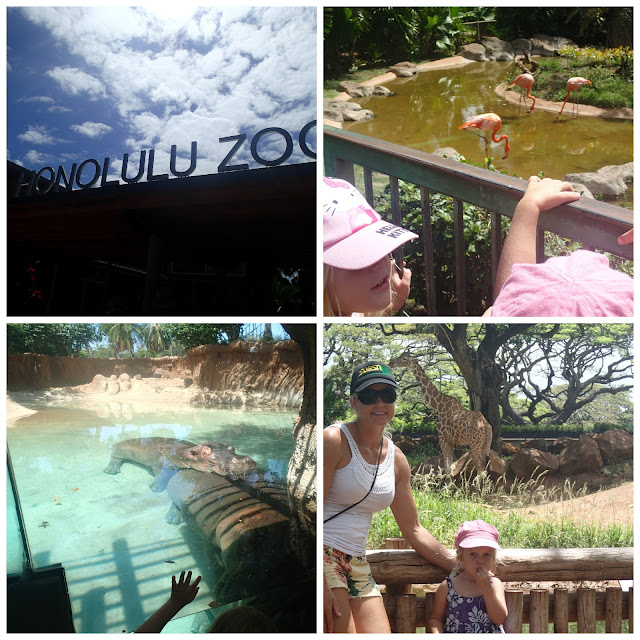 zoo - My top 6 things to do with kids in Hawaii