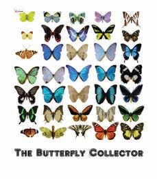 The Butterfly Collector- A Series of Short Stories
