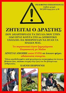 Αμοιβή 1000 ευρώ για τους δολοφόνους ζώων στο Αργος
