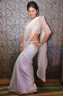 Anjali latest Glamorous pics in saree 033