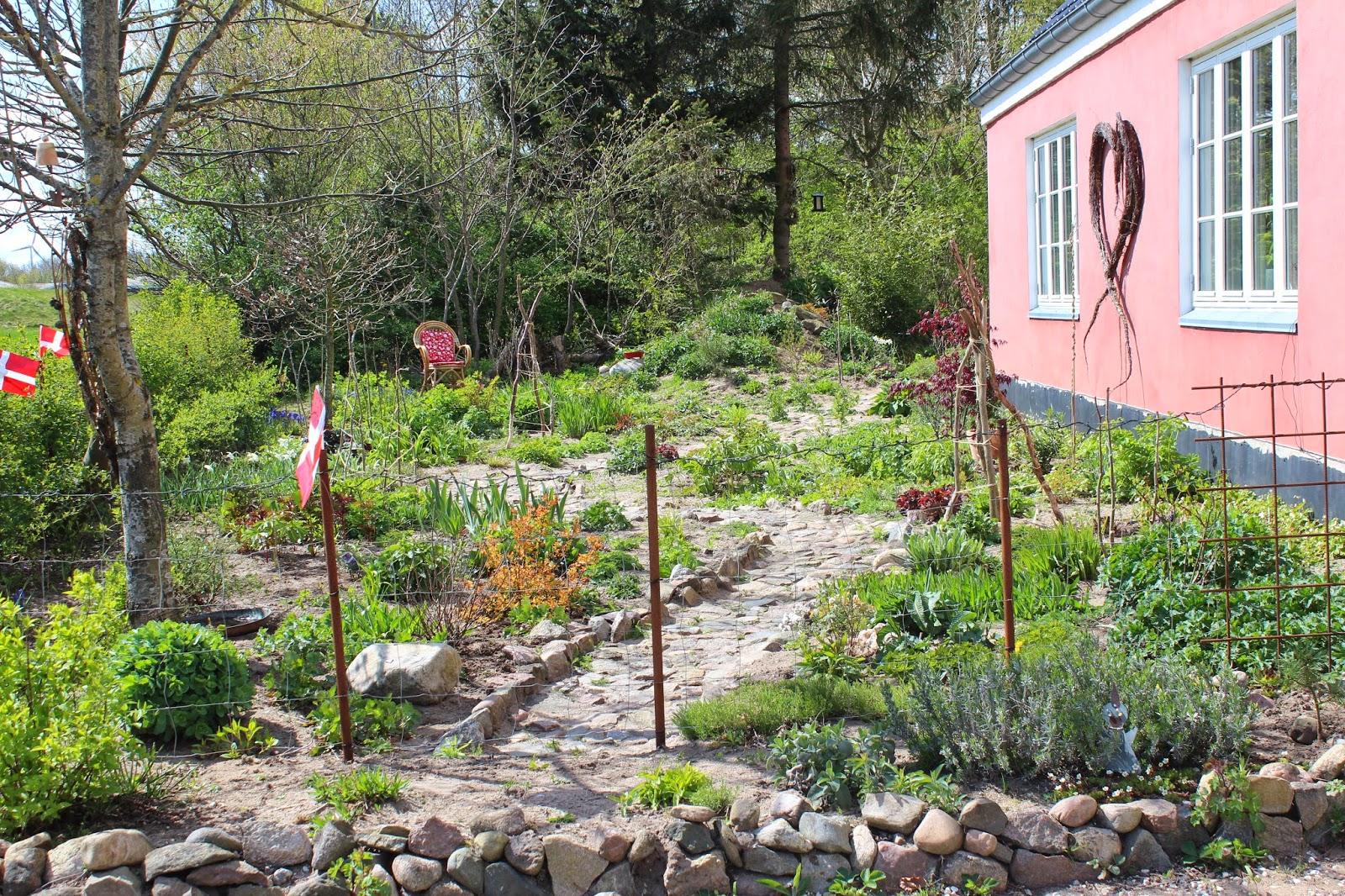 Anettesflora: tulipan fest og forhaven i vækst