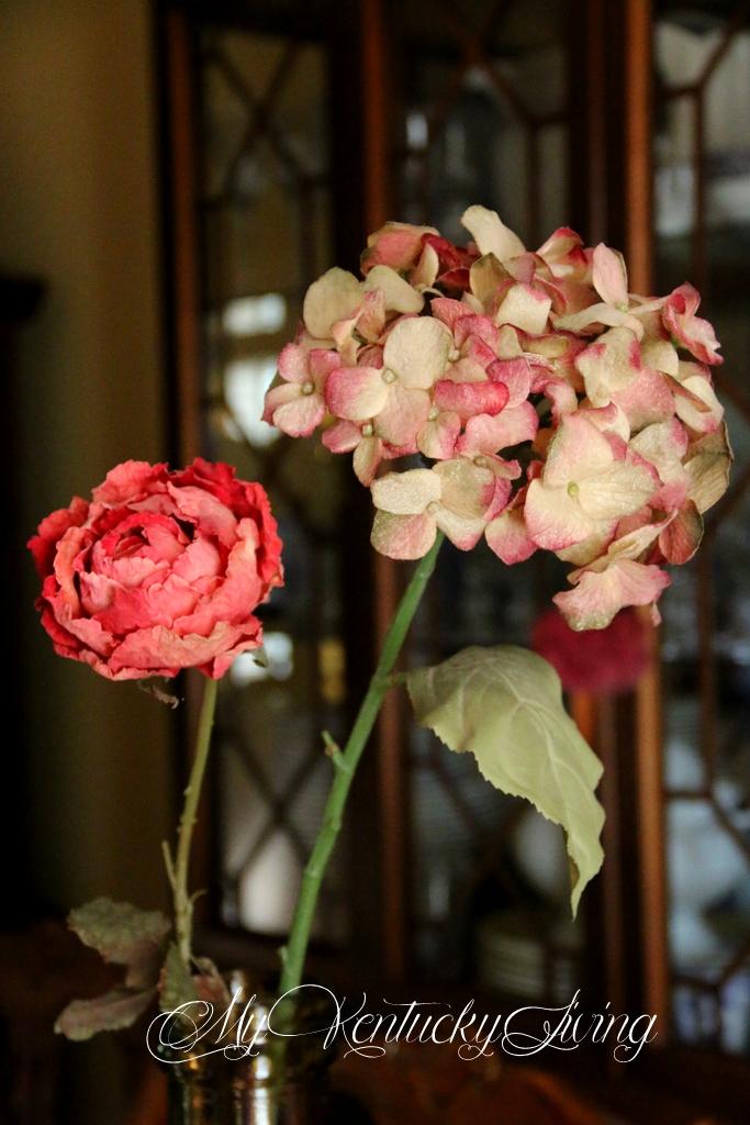 long stemmed pink flowers