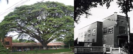 Colegio Instituto Técnico