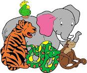 ¿Qué sabés sobre animales?