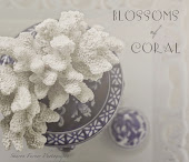 BLOSSOMS OF CORAL