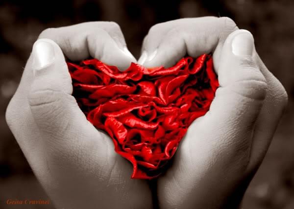 imagen de corazón en la mano