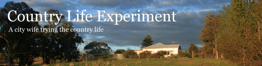 Country Life Experiment