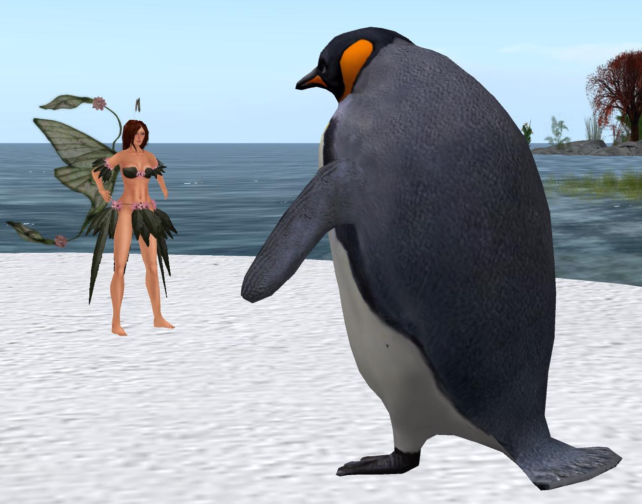emperor penguin body parts Book Covers