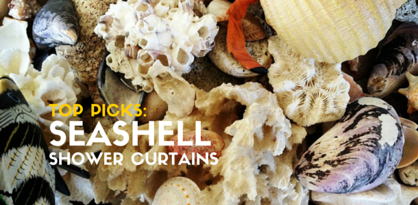 Top-Rated Seashell Shower Curtains