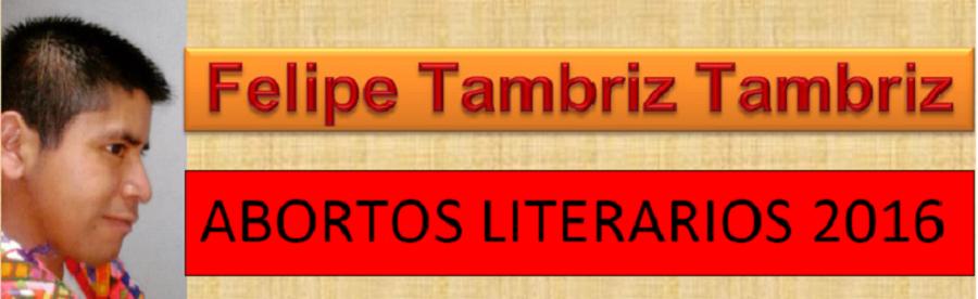 Felipe Tambriz Tambriz