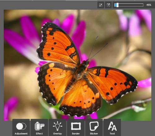 fotoeffekty online