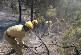 El Congreso español rechaza homogeneizar las funciones de los trabajadores forestales