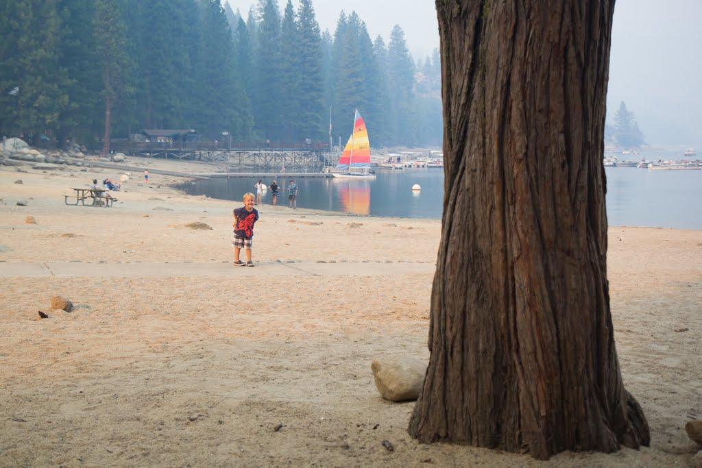 Pinecrest Lake 2015