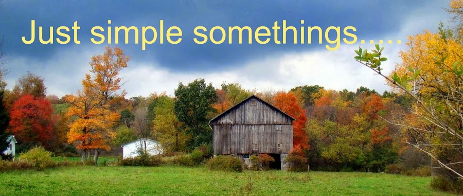 JUST SIMPLE SOMETHINGS
